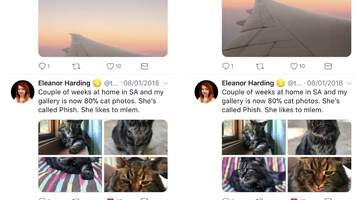 Twitter is using machine learning to crop photos to the most interesting part