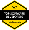 Top Software Development Companies in Salinas